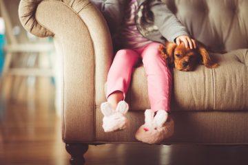 Cómo adaptar tu casa para mascotas